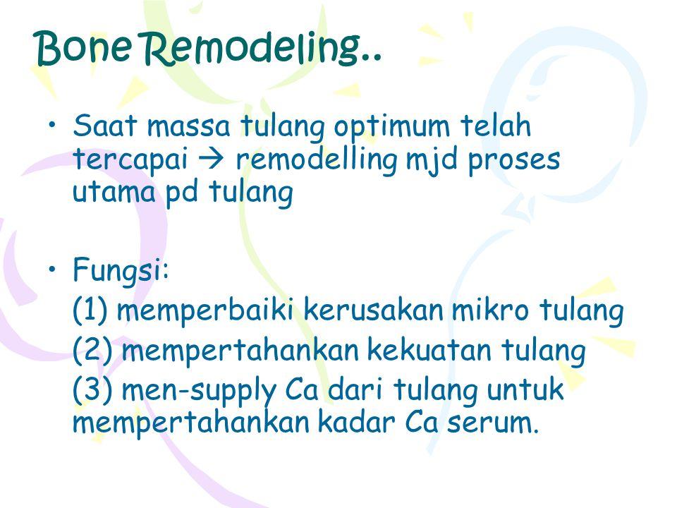 Bone Remodeling.. Saat massa tulang optimum telah tercapai  remodelling mjd proses utama pd tulang Fungsi: (1) memperbaiki kerusakan mikro tulang (2)