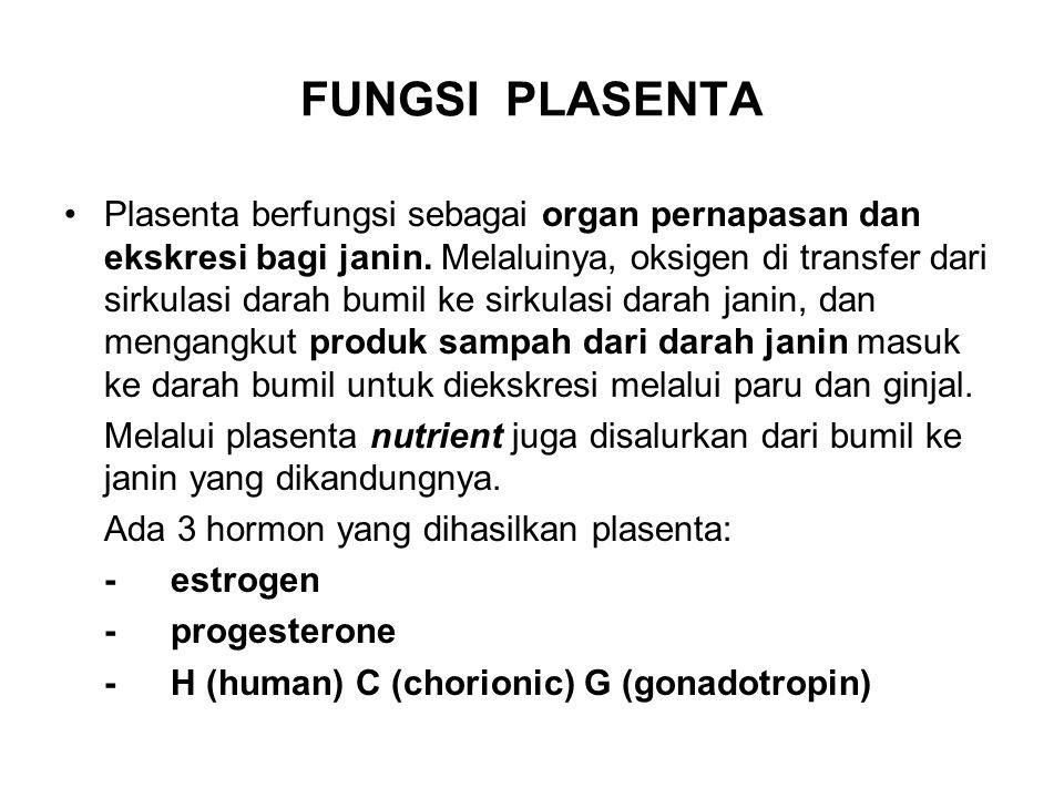 FUNGSI PLASENTA Plasenta berfungsi sebagai organ pernapasan dan ekskresi bagi janin. Melaluinya, oksigen di transfer dari sirkulasi darah bumil ke sir