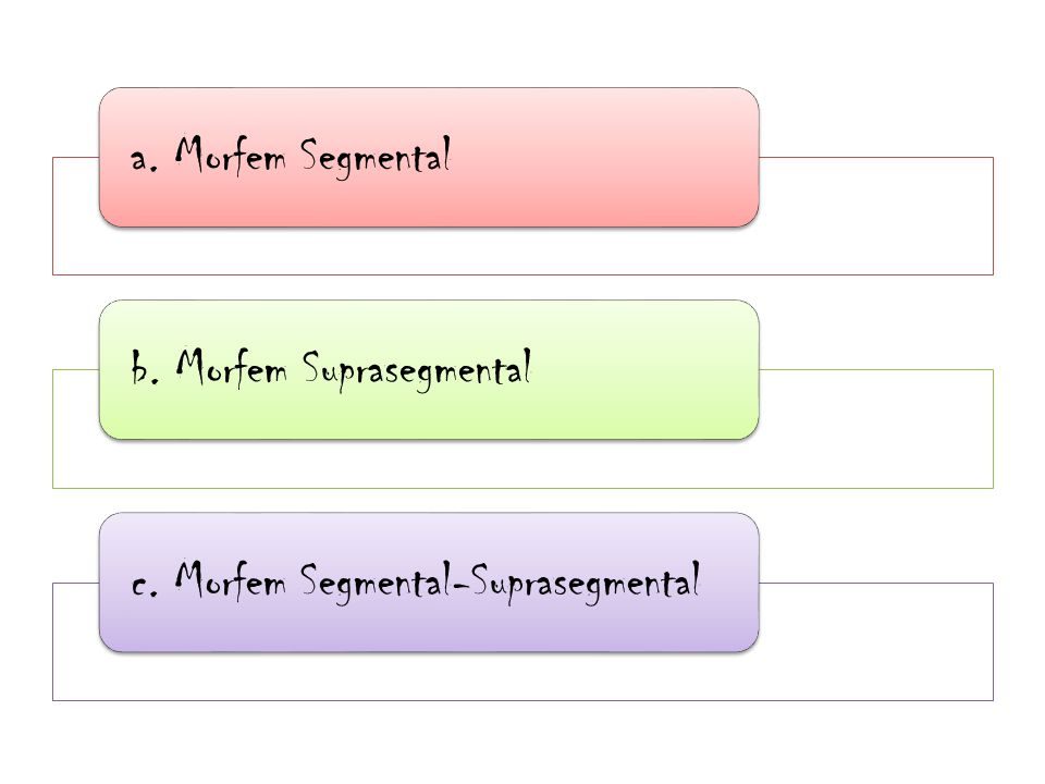 a. Morfem Segmentalb. Morfem Suprasegmentalc. Morfem Segmental-Suprasegmental