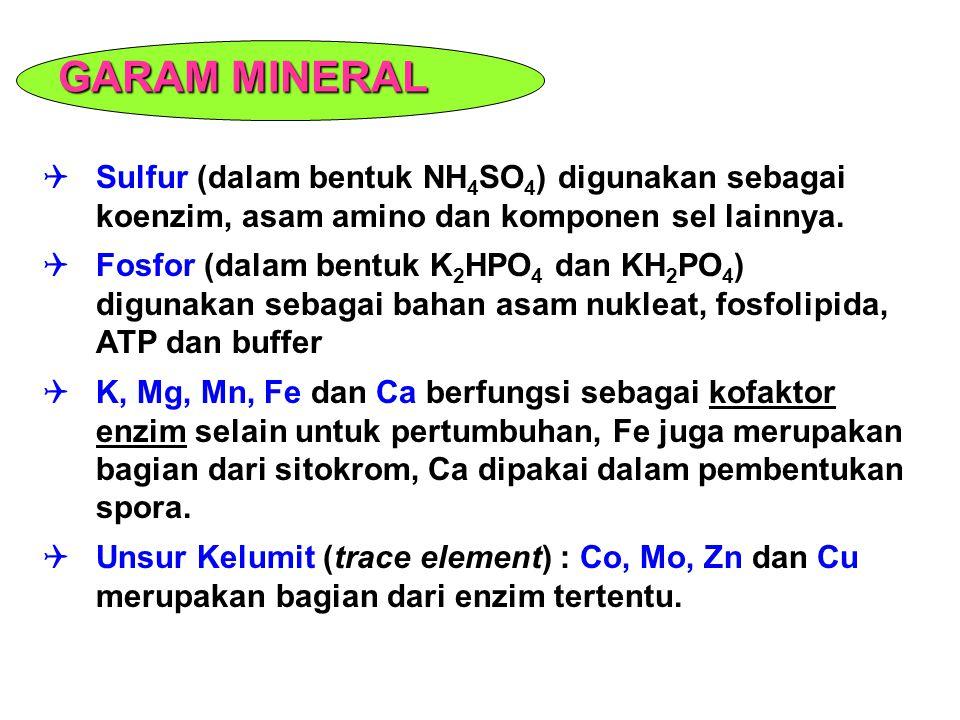  Sulfur (dalam bentuk NH 4 SO 4 ) digunakan sebagai koenzim, asam amino dan komponen sel lainnya.  Fosfor (dalam bentuk K 2 HPO 4 dan KH 2 PO 4 ) di
