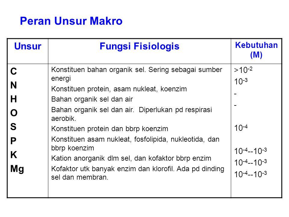 UnsurFungsi Fisiologis Kebutuhan (M) C N H O S P K Mg Konstituen bahan organik sel. Sering sebagai sumber energi Konstituen protein, asam nukleat, koe