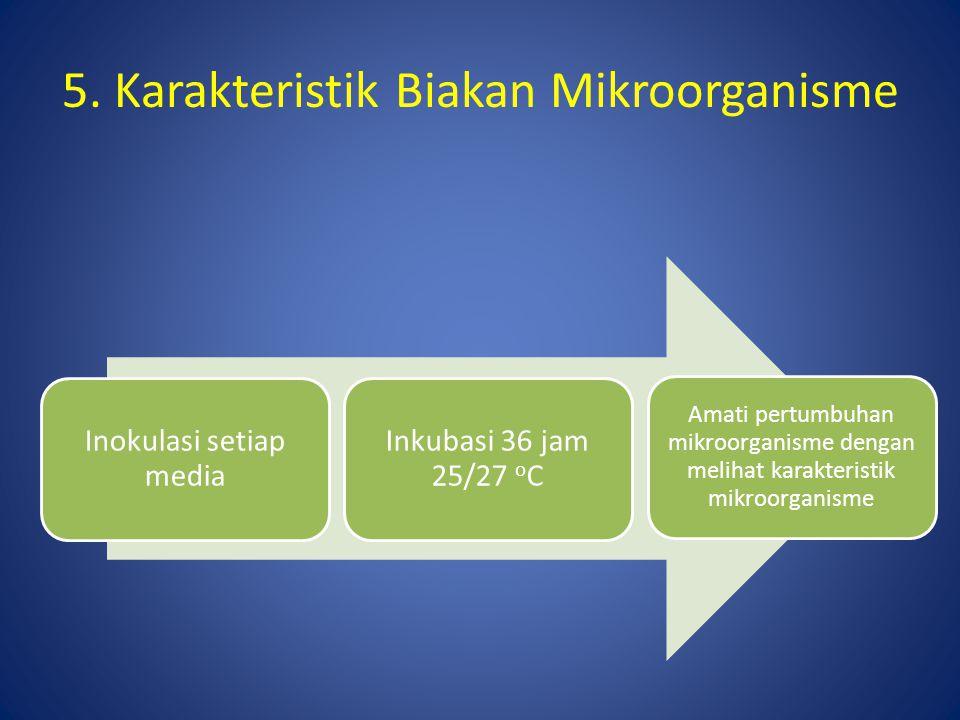 5. Karakteristik Biakan Mikroorganisme Inokulasi setiap media Inkubasi 36 jam 25/27 o C Amati pertumbuhan mikroorganisme dengan melihat karakteristik