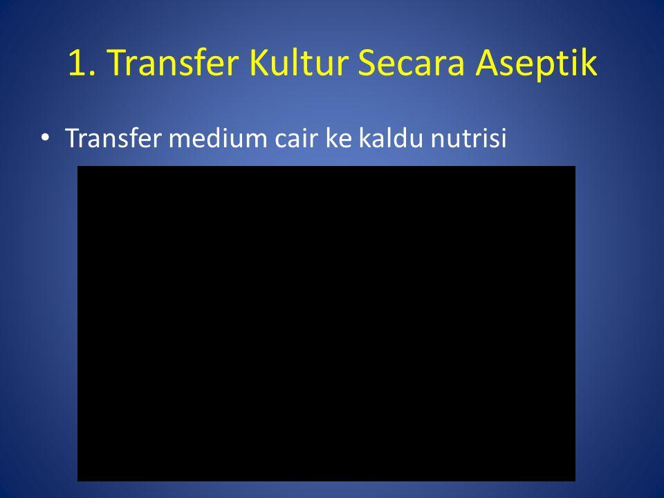 Transfer medium cair ke kaldu nutrisi