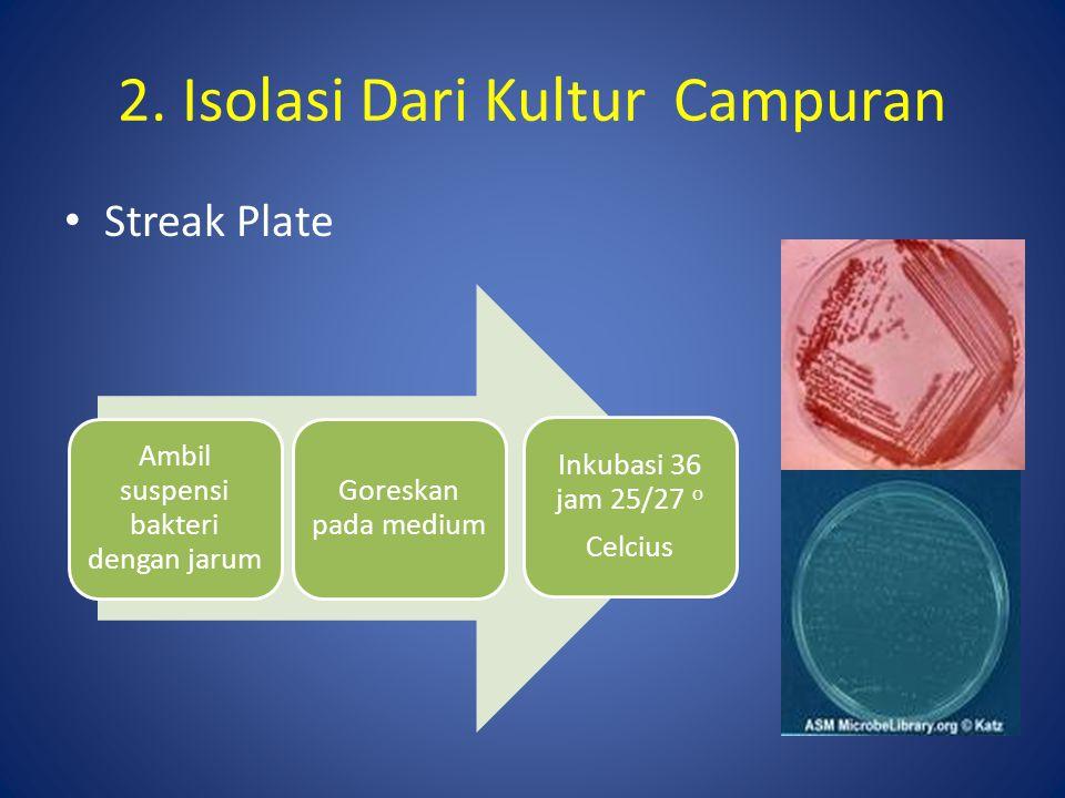 Spread Plate 2.