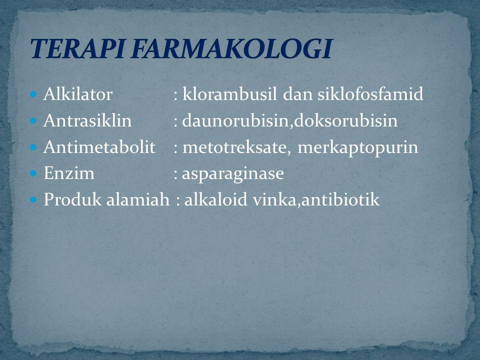 Alkilator : klorambusil dan siklofosfamid Antrasiklin : daunorubisin,doksorubisin Antimetabolit: metotreksate, merkaptopurin Enzim : asparaginase Produk alamiah : alkaloid vinka,antibiotik
