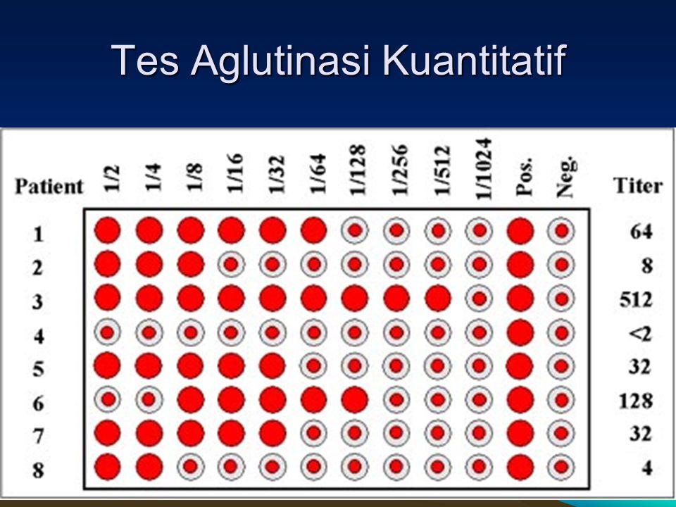 SLIDE Dr RATIH18 Tes Aglutinasi Kuantitatif 18