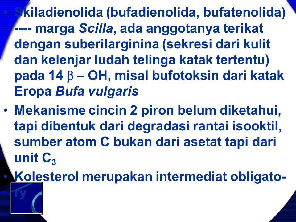 Skiladienolida (bufadienolida, bufatenolida) ---- marga Scilla, ada anggotanya terikat dengan suberilarginina (sekresi dari kulit dan kelenjar ludah t
