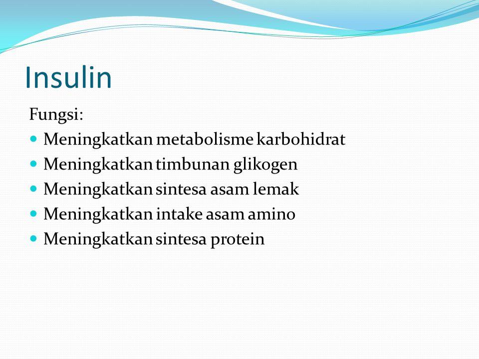 Insulin Fungsi: Meningkatkan metabolisme karbohidrat Meningkatkan timbunan glikogen Meningkatkan sintesa asam lemak Meningkatkan intake asam amino Meningkatkan sintesa protein
