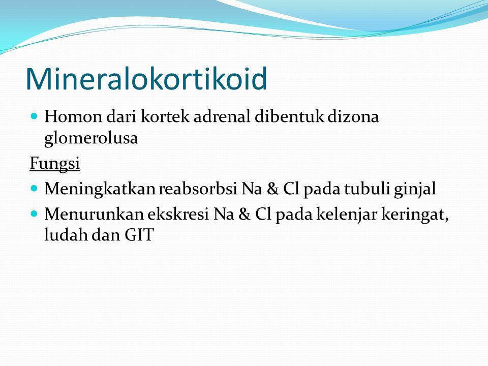 Mineralokortikoid Homon dari kortek adrenal dibentuk dizona glomerolusa Fungsi Meningkatkan reabsorbsi Na & Cl pada tubuli ginjal Menurunkan ekskresi Na & Cl pada kelenjar keringat, ludah dan GIT