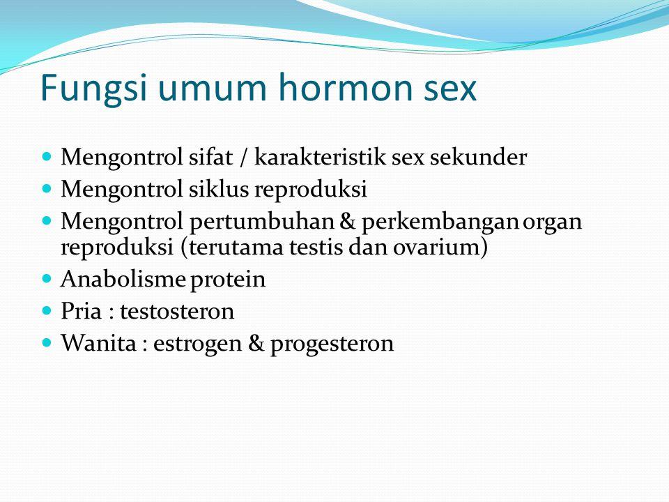 Fungsi umum hormon sex Mengontrol sifat / karakteristik sex sekunder Mengontrol siklus reproduksi Mengontrol pertumbuhan & perkembangan organ reproduksi (terutama testis dan ovarium) Anabolisme protein Pria : testosteron Wanita : estrogen & progesteron
