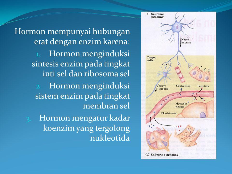 Hormon mempunyai hubungan erat dengan enzim karena: 1.