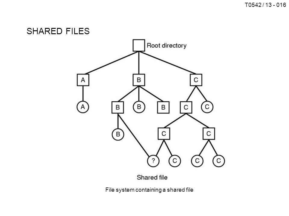 T0542 / 13 - 016 SHARED FILES File system containing a shared file