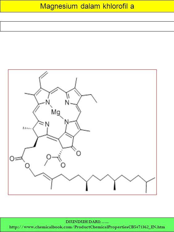 Magnesium dalam khlorofil a DIUNDUH DARI: ….. http://www.chemicalbook.com/ProductChemicalPropertiesCB5471362_EN.htm