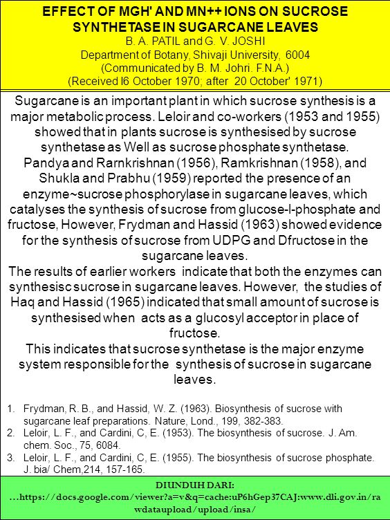 EFFECT OF MGH' AND MN++ IONS ON SUCROSE SYNTHETASE IN SUGARCANE LEAVES B. A. PATIL and G. V. JOSHI Department of Botany, Shivaji University, 6004 (Com