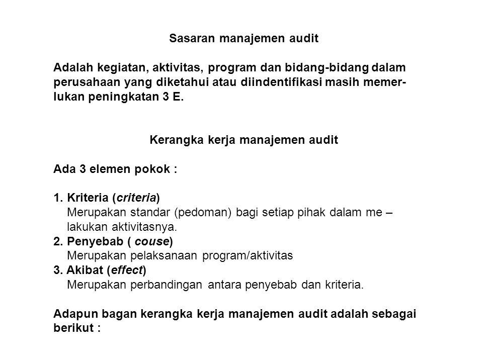 Sasaran manajemen audit Adalah kegiatan, aktivitas, program dan bidang-bidang dalam perusahaan yang diketahui atau diindentifikasi masih memer- lukan peningkatan 3 E.