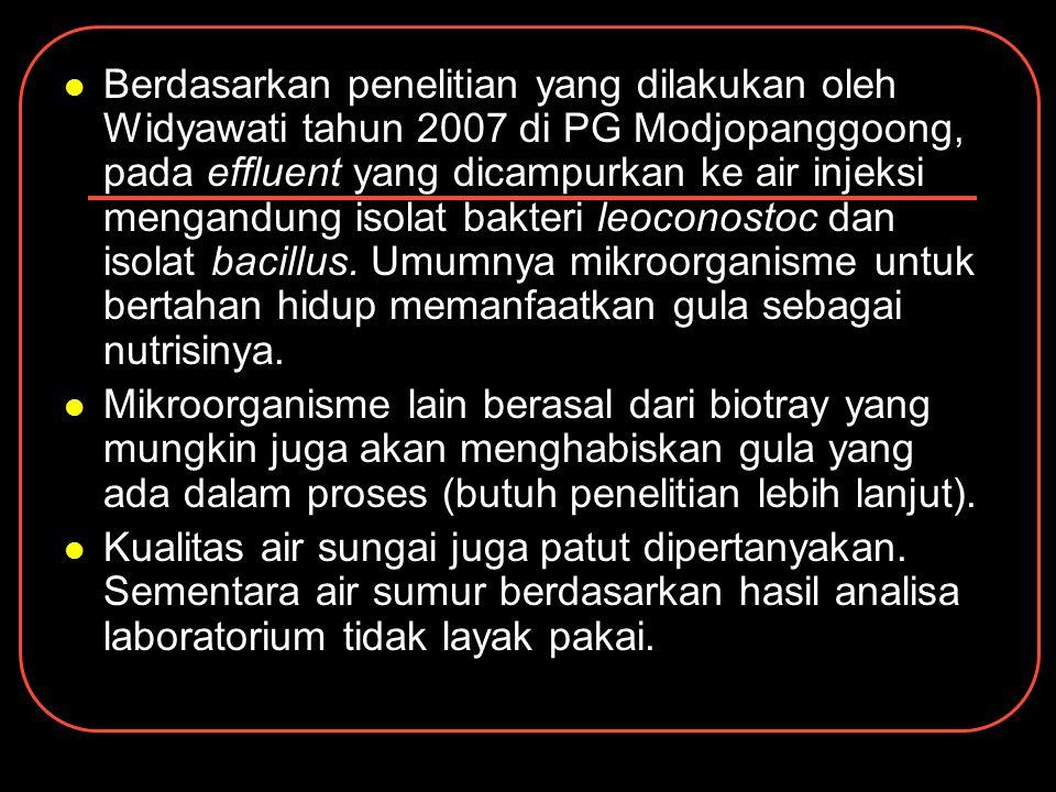 Berdasarkan penelitian yang dilakukan oleh Widyawati tahun 2007 di PG Modjopanggoong, pada effluent yang dicampurkan ke air injeksi mengandung isolat
