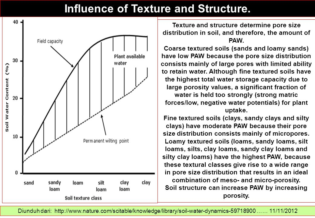 Influence of Texture and Structure. Diunduh dari: http://www.nature.com/scitable/knowledge/library/soil-water-dynamics-59718900 …… 11/11/2012 Texture