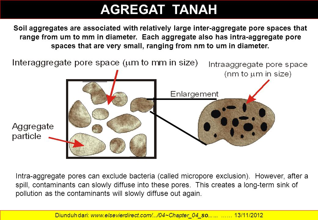 Soil aggregates are associated with relatively large inter-aggregate pore spaces that range from um to mm in diameter. Each aggregate also has intra-a