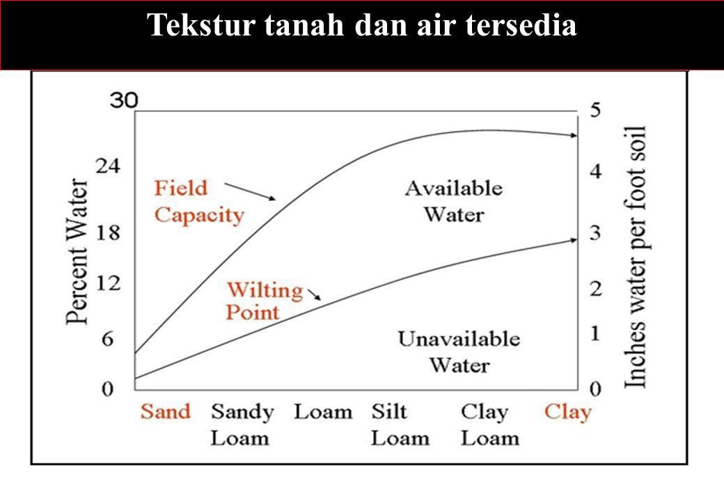 Tekstur tanah dan air tersedia