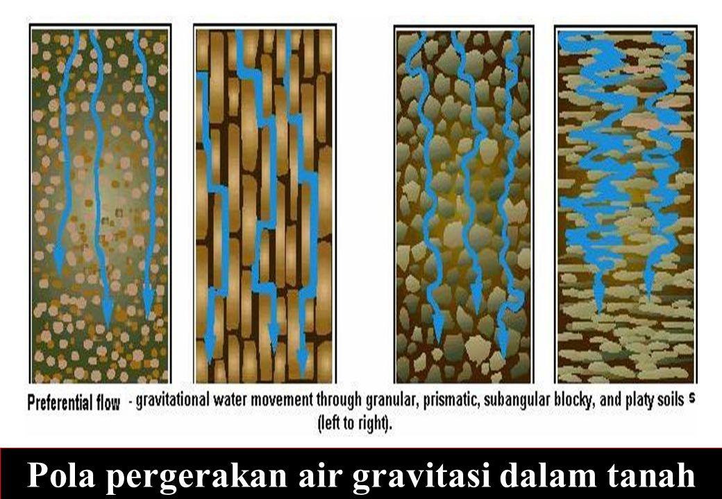52 Pola pergerakan air gravitasi dalam tanah