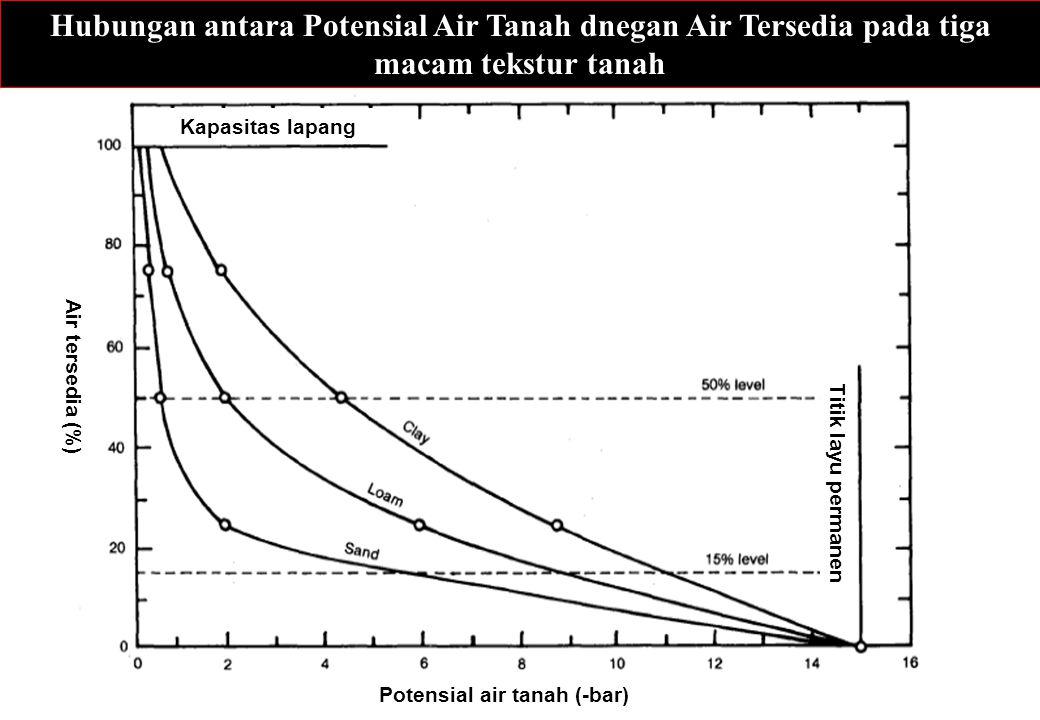 Hubungan antara Potensial Air Tanah dnegan Air Tersedia pada tiga macam tekstur tanah Potensial air tanah (-bar) Air tersedia (%) Kapasitas lapang Tit
