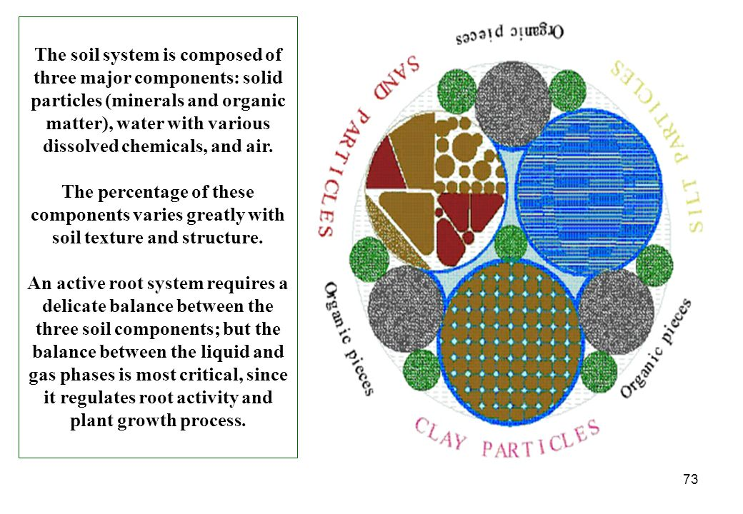 73 The soil system is composed of three major components: solid particles (minerals and organic matter), water with various dissolved chemicals, and a
