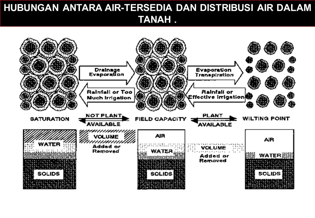 HUBUNGAN ANTARA AIR-TERSEDIA DAN DISTRIBUSI AIR DALAM TANAH.