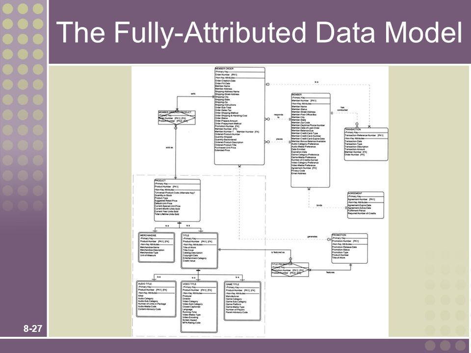8-27 The Fully-Attributed Data Model