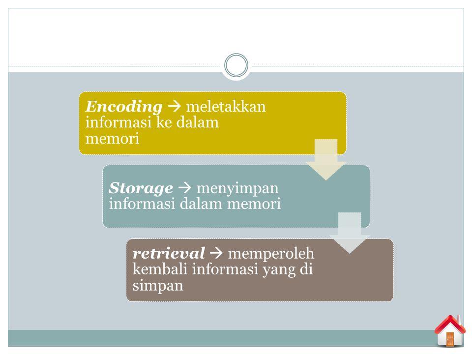Encoding  meletakkan informasi ke dalam memori Storage  menyimpan informasi dalam memori retrieval  memperoleh kembali informasi yang di simpan