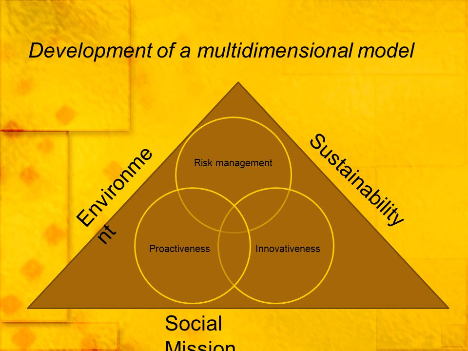 Development of a multidimensional model Risk management InnovativenessProactiveness Sustainability Environme nt Social Mission