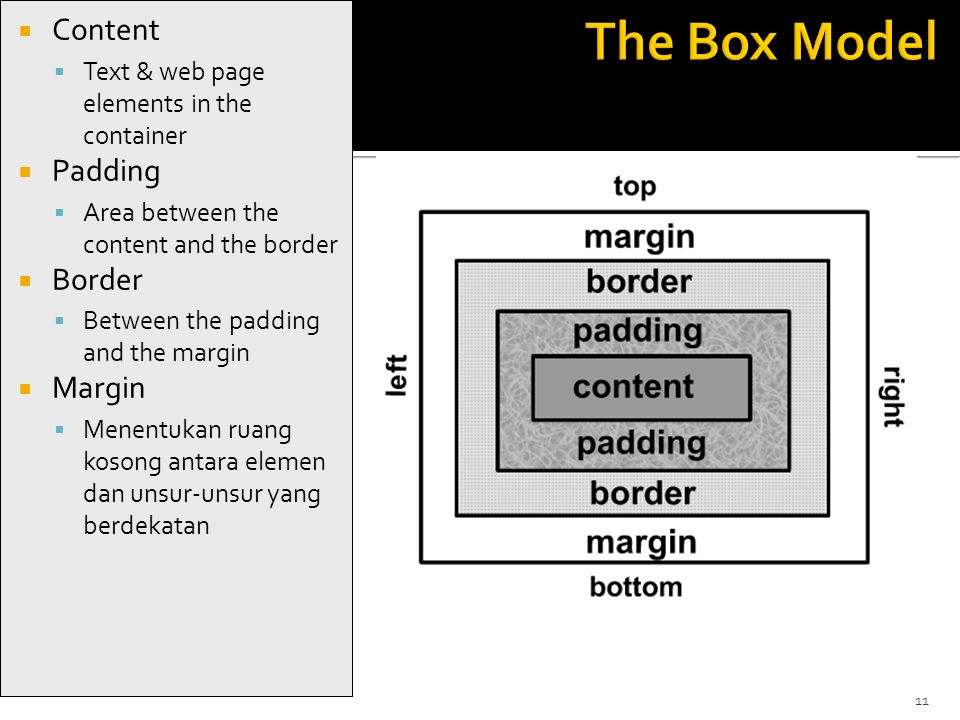 11  Content  Text & web page elements in the container  Padding  Area between the content and the border  Border  Between the padding and the margin  Margin  Menentukan ruang kosong antara elemen dan unsur-unsur yang berdekatan