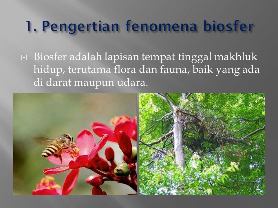  Biosfer adalah lapisan tempat tinggal makhluk hidup, terutama flora dan fauna, baik yang ada di darat maupun udara.