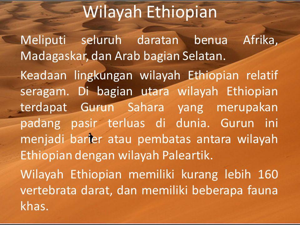 Wilayah Ethiopian Meliputi seluruh daratan benua Afrika, Madagaskar, dan Arab bagian Selatan.
