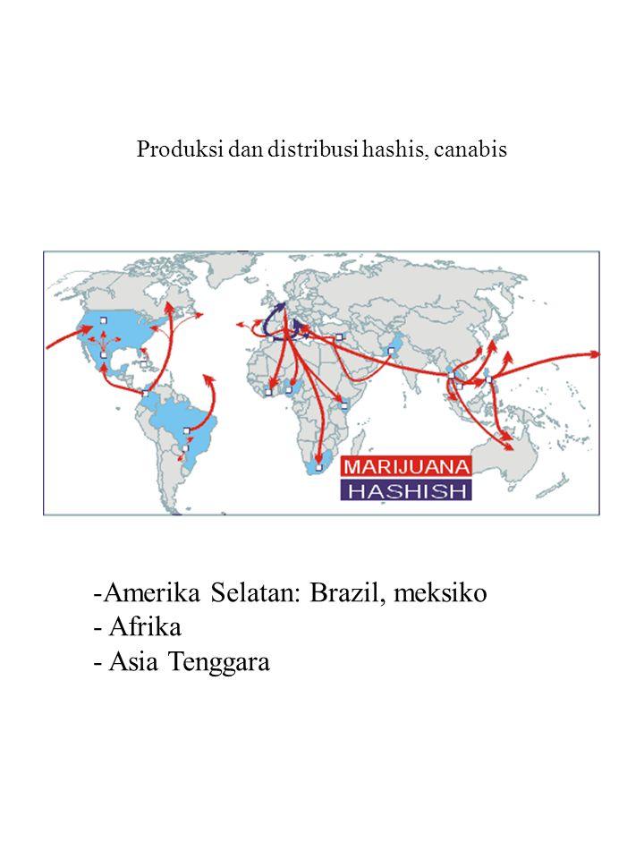 Produksi dan distribusi hashis, canabis -Amerika Selatan: Brazil, meksiko - Afrika - Asia Tenggara