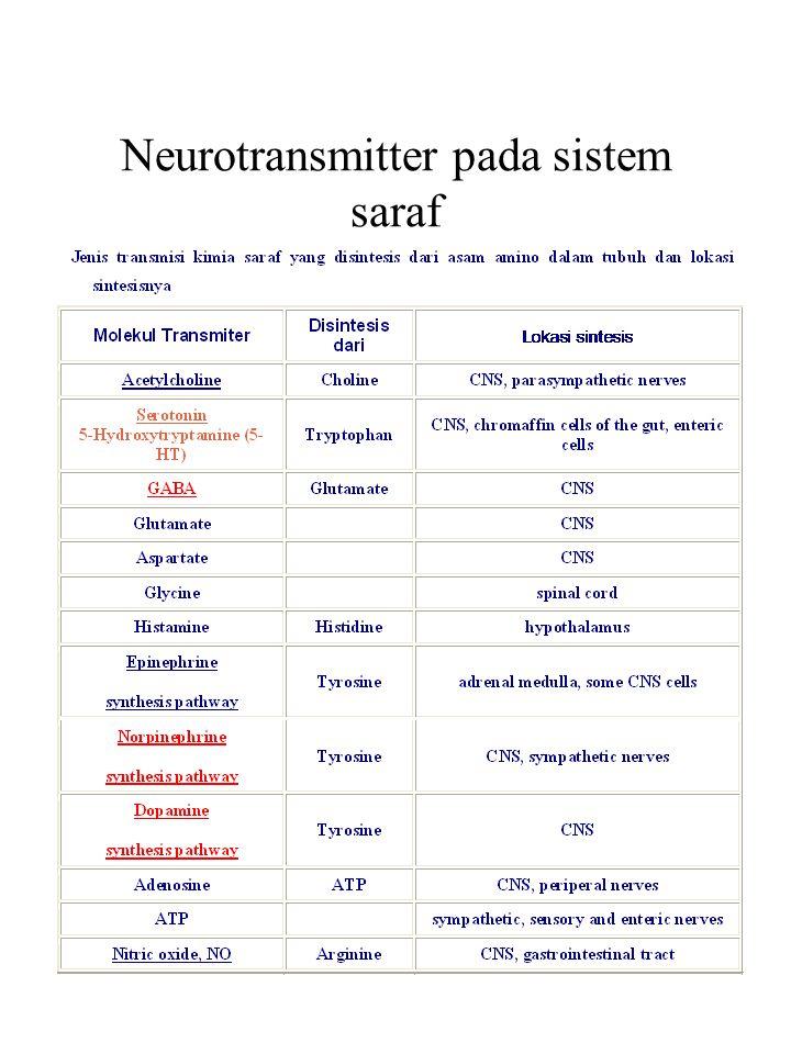 Transmisi saraf