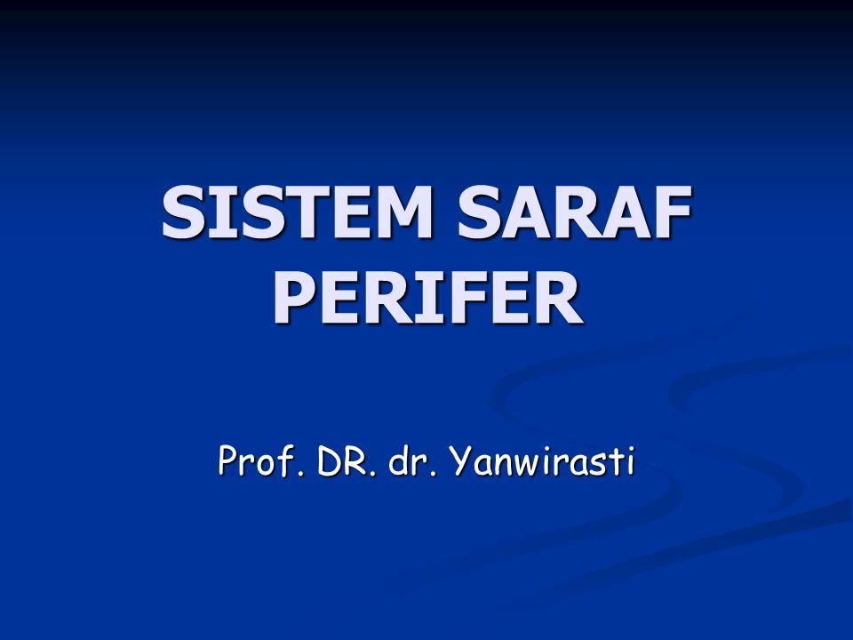 SISTEM SARAF PERIFER Prof. DR. dr. Yanwirasti