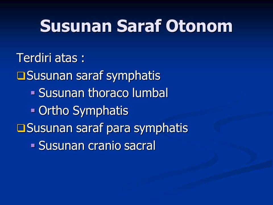 Terdiri atas :  Susunan saraf symphatis  Susunan thoraco lumbal  Ortho Symphatis  Susunan saraf para symphatis  Susunan cranio sacral Susunan Sar
