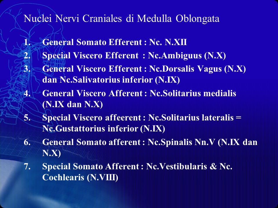 Nuclei Nervi Craniales di Medulla Oblongata 1.General Somato Efferent : Nc. N.XII 2.Special Viscero Efferent : Nc.Ambiguus (N.X) 3.General Viscero Eff