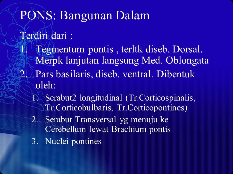 PONS: Bangunan Dalam Terdiri dari : 1.Tegmentum pontis, terltk diseb. Dorsal. Merpk lanjutan langsung Med. Oblongata 2.Pars basilaris, diseb. ventral.