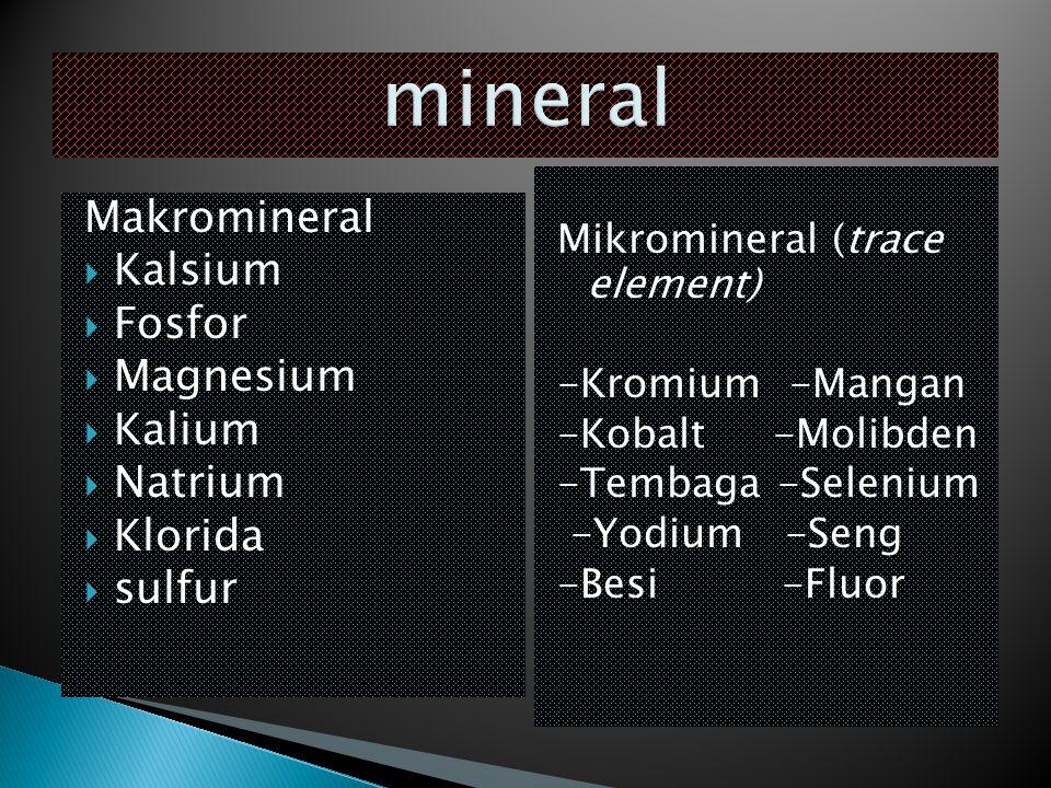 Makromineral  Kalsium  Fosfor  Magnesium  Kalium  Natrium  Klorida  sulfur Mikromineral (trace element) -Kromium -Mangan -Kobalt -Molibden -Tem