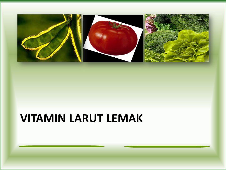Retinol –Fortified milk, butter cheese, cream –Fortified margarine –Eggs –Liver Vitamin A Fungsi: penglihatan Pemeliharaan kornea, sel epitel, membran mukosa, kulit Pertumbuhan tulang dan gigi reproduksi imunitas Efek antioksidan beta-karoten Beta-carotene –Sayuran berdaun hijau : bayam, broccoli – Sayuran (berwarna orange): wortel, labu, ubi jalar, kentang – Buah (berwarna orange): aprikot, melon Sumber: Defisiensi: Rabun senja Pengeringan kornea