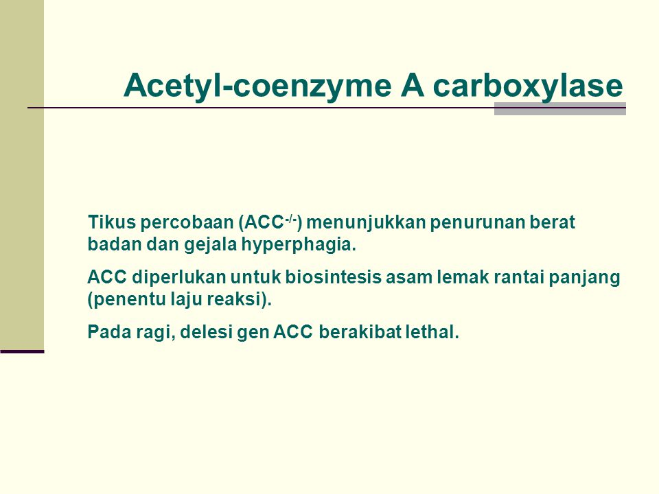 Tikus percobaan (ACC -/- ) menunjukkan penurunan berat badan dan gejala hyperphagia. ACC diperlukan untuk biosintesis asam lemak rantai panjang (penen