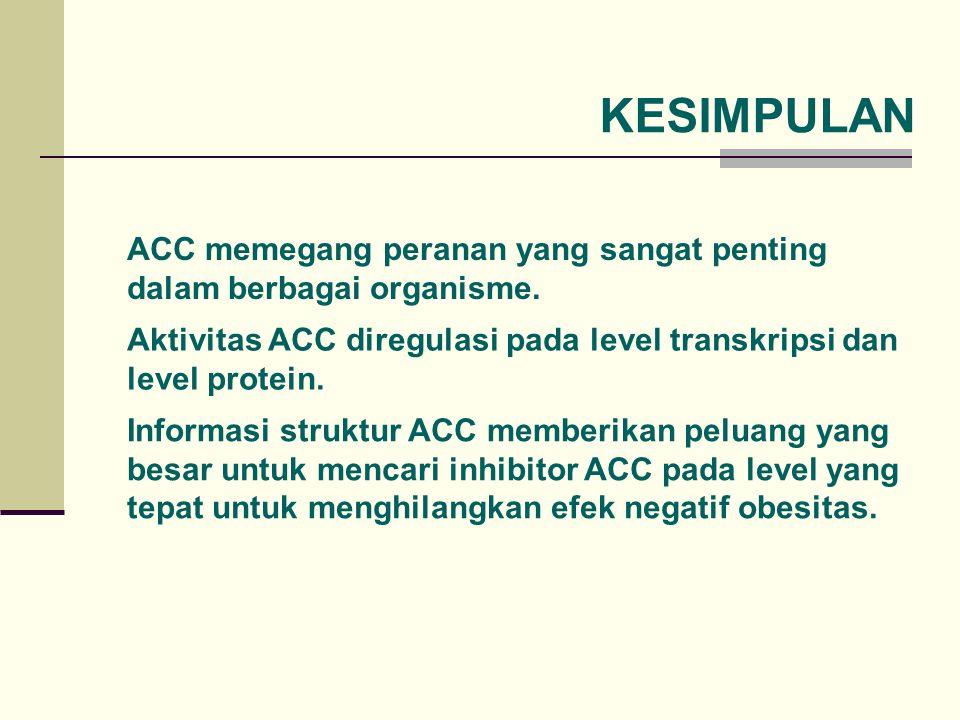 KESIMPULAN ACC memegang peranan yang sangat penting dalam berbagai organisme. Aktivitas ACC diregulasi pada level transkripsi dan level protein. Infor