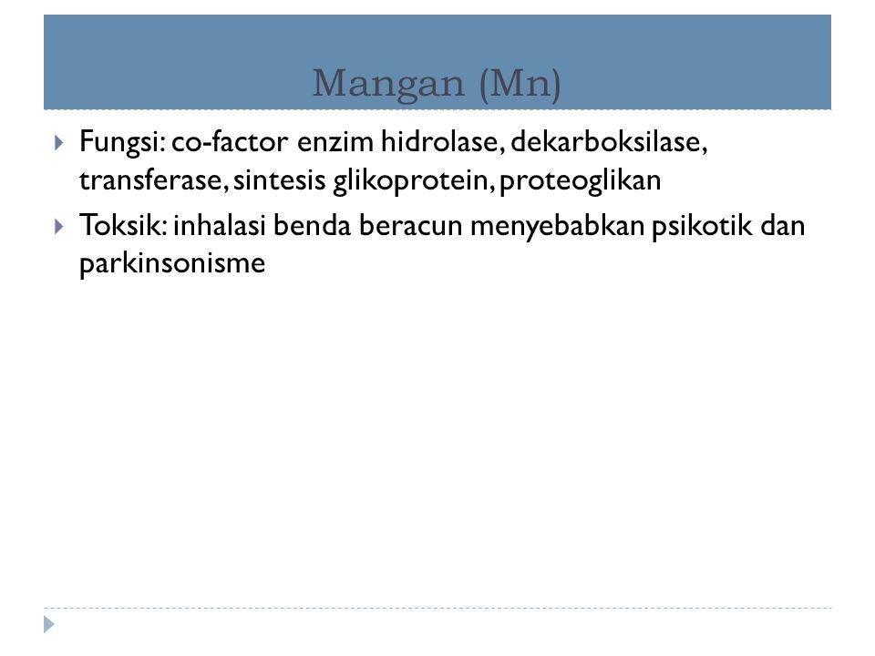 Mangan (Mn)  Fungsi: co-factor enzim hidrolase, dekarboksilase, transferase, sintesis glikoprotein, proteoglikan  Toksik: inhalasi benda beracun men