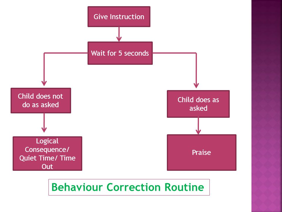 Give Instruction Wait for 5 seconds Child does not do as asked Child does as asked Logical Consequence/ Quiet Time/ Time Out Praise Behaviour Correction Routine