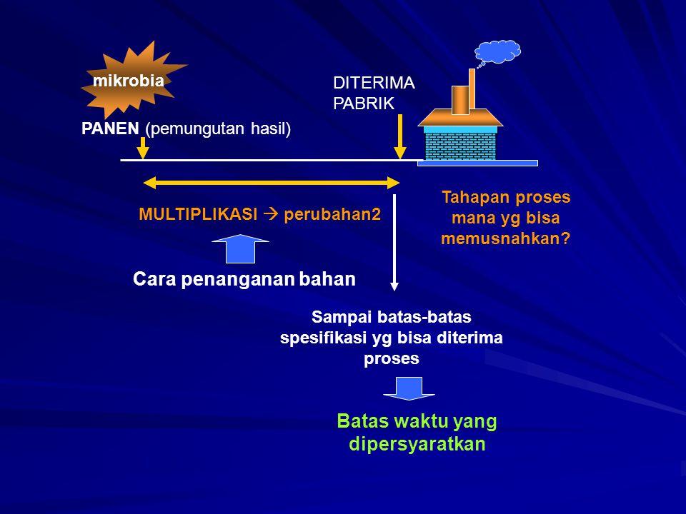 PANEN (pemungutan hasil) DITERIMA PABRIK MULTIPLIKASI  perubahan2 Sampai batas-batas spesifikasi yg bisa diterima proses Batas waktu yang dipersyarat