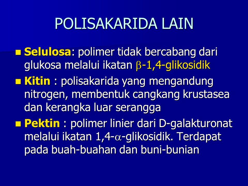 POLISAKARIDA LAIN Selulosa: polimer tidak bercabang dari glukosa melalui ikatan  -1,4-glikosidik Selulosa: polimer tidak bercabang dari glukosa melal