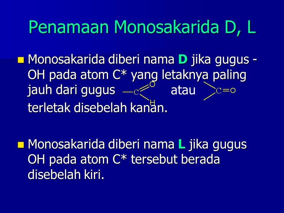 Penamaan Monosakarida D, L Monosakarida diberi nama D jika gugus - OH pada atom C* yang letaknya paling jauh dari gugus Monosakarida diberi nama D jik