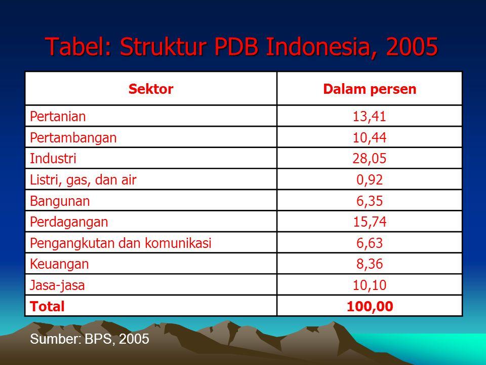 Tabel: Struktur PDB Indonesia, 2005 SektorDalam persen Pertanian 13,41 Pertambangan 10,44 Industri 28,05 Listri, gas, dan air 0,92 Bangunan 6,35 Perda