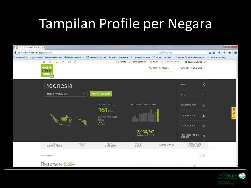 Tampilan Profile per Negara